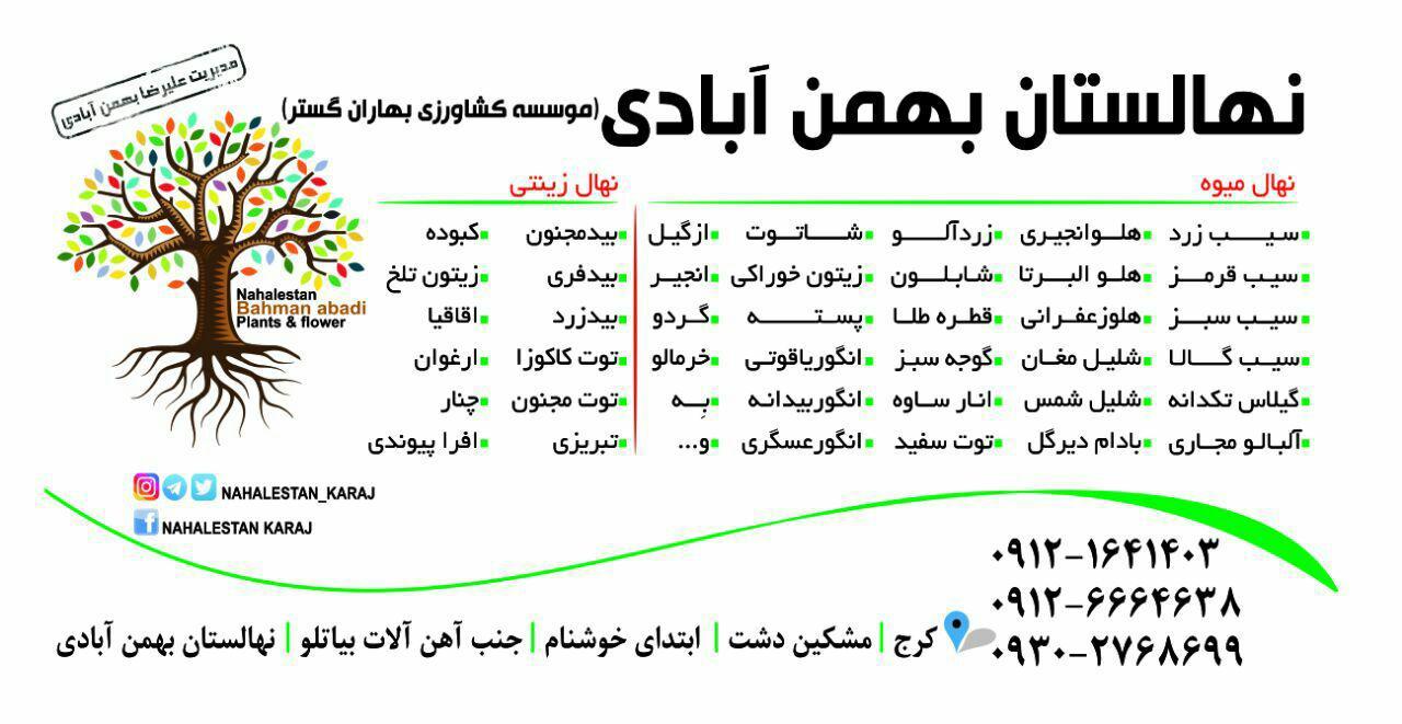 نهالستان بهمن ابادی